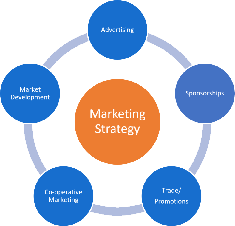 Image result for marketing strategy development