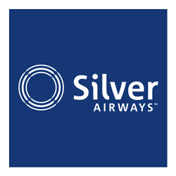 Silver reversed logo